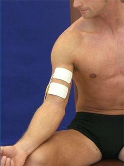 biceps1ch2elem