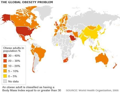 obesidad-en-el-minda